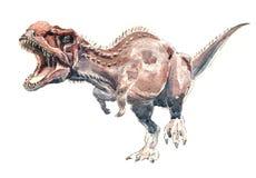 Dinosaurus d'aquarelle Photographie stock libre de droits