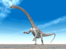 Dinosaurus Diplodocus royalty-vrije stock afbeeldingen