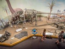Dinosaurus fossiel tentoongesteld voorwerp royalty-vrije stock afbeeldingen