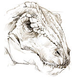 dinosaurus het potloodschets van de dinosaurustekening Stock Foto
