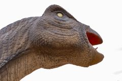 Dinosaurus hoofd dichte omhooggaand royalty-vrije stock foto's