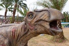 Dinosaurus hoofd dichte omhooggaand stock afbeeldingen