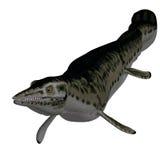 Dinosaurus Mosasaur Royalty-vrije Stock Afbeelding