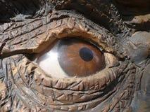Dinosaurus - oog Stock Afbeeldingen