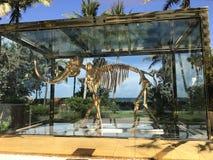 Dinosaurus op het strand Stock Afbeelding