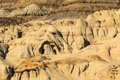 Dinosaurus Provinciaal Park stock afbeelding