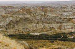 Dinosaurus Provinciaal Park, Alberta, Canada royalty-vrije stock foto