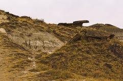 Dinosaurus Provinciaal Park, Alberta, Canada stock afbeelding