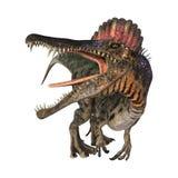 Dinosaurus Spinosaurus Royalty-vrije Stock Afbeelding