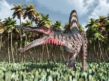 Dinosaurus Spinosaurus in de wildernis Royalty-vrije Stock Foto's