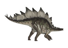 Dinosaurus Stegosaurus Royalty-vrije Stock Foto