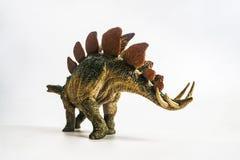 Dinosaurus, Stegosaurus op witte achtergrond royalty-vrije stock afbeeldingen