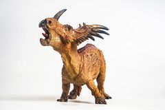 Dinosaurus, Styracosaurus op witte achtergrond stock foto