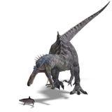 Dinosaurus Suchominus Stock Afbeeldingen