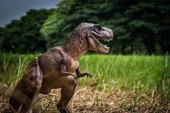 Dinosaurus, T -t-rex met boomtakken tegen op de aard royalty-vrije stock afbeelding