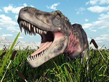 Dinosaurus Tarbosaurus Stock Afbeeldingen