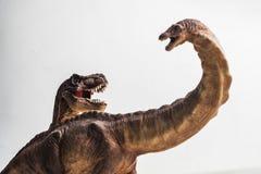 Dinosaurus, Tyrannosaurus met Apatosaurus op witte achtergrond stock afbeeldingen