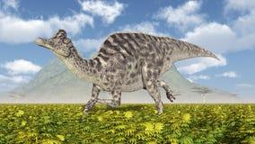 Dinosaurus Velafrons Stock Foto's