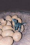 Dinosaurusbeeldhouwwerk stock afbeeldingen