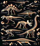 Dinosaurusfossielen, Eieren, Beenderenskeletten stock illustratie