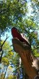 Dinosaurushoofd Royalty-vrije Stock Afbeeldingen