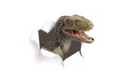 dinosaury Obraz Royalty Free