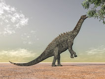 Dinossauro Ampelosaurus Fotografia de Stock Royalty Free