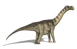 Dinossauro de Camarasaurus Fotografia de Stock Royalty Free