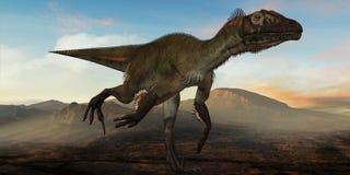 Dinossauro de Utahraptor ostrommayorum-3D Fotografia de Stock Royalty Free