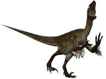 Dinossauro de Utahraptor ostrommayorum-3D Imagens de Stock Royalty Free