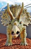 Dinossauro do Triceratops Imagem de Stock Royalty Free