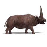 Dinossauro Elasmotherium Foto de Stock