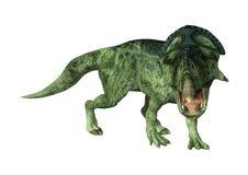 dinossauro Protoceratops da rendição 3D no branco Fotografia de Stock Royalty Free