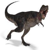 Dinossauro Tarbosaurus ilustração royalty free
