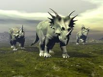 Dinossauros do Styracosaurus que andam - 3D rendem Fotografia de Stock