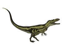 Dinossauros do Torvosaurus que rujem - 3D rendem ilustração royalty free