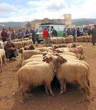 Dinsdag Souk in Azrou, Marokko stock afbeelding
