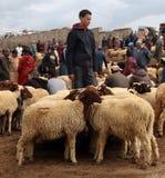 Dinsdag Souk in Azrou, Marokko stock foto's