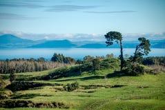 Dintorni del lago Taupo Fotografia Stock