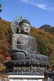 Dio del tempiale di Seoraksan Immagini Stock