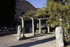 Diocletian浴的庭院在罗马 免版税库存图片