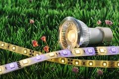 Diodo emissor de luz diferente Fotografia de Stock