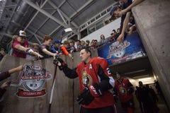 Dion Phaneuf van de Ottawa Senators royalty-vrije stock fotografie