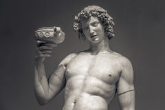 Dionysus Bacchus Wine statue portrait.  Royalty Free Stock Photography