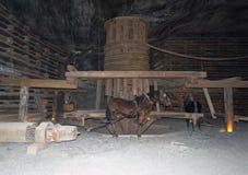 Wieliczka Salt Mine, Poland Stock Photography