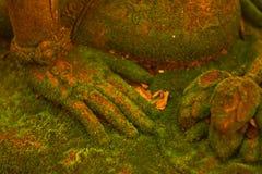 Diosa del estuco sagrada con el musgo verde Fotografía de archivo libre de regalías