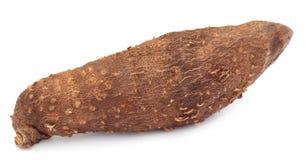 Dioscoreabulbiferaen eller luftar potatisen Arkivfoton