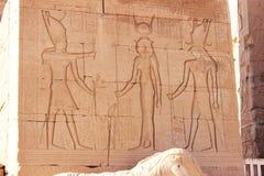 Dioses antiguos y el faraón, Egipto Imagen de archivo libre de regalías