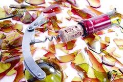 Dipendenza dell'alcool Immagini Stock Libere da Diritti