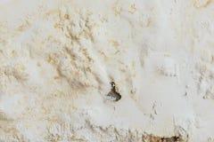 Dipinga il gonfiamento di colore sulla vecchia parete bianca Immagine Stock